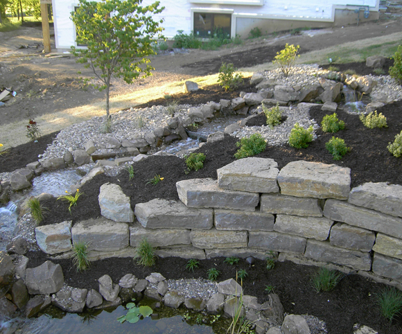 landscaping with wall, plantings and tree